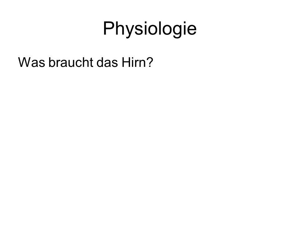 Physiologie Was braucht das Hirn