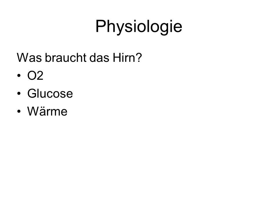 Physiologie Was braucht das Hirn O2 Glucose Wärme