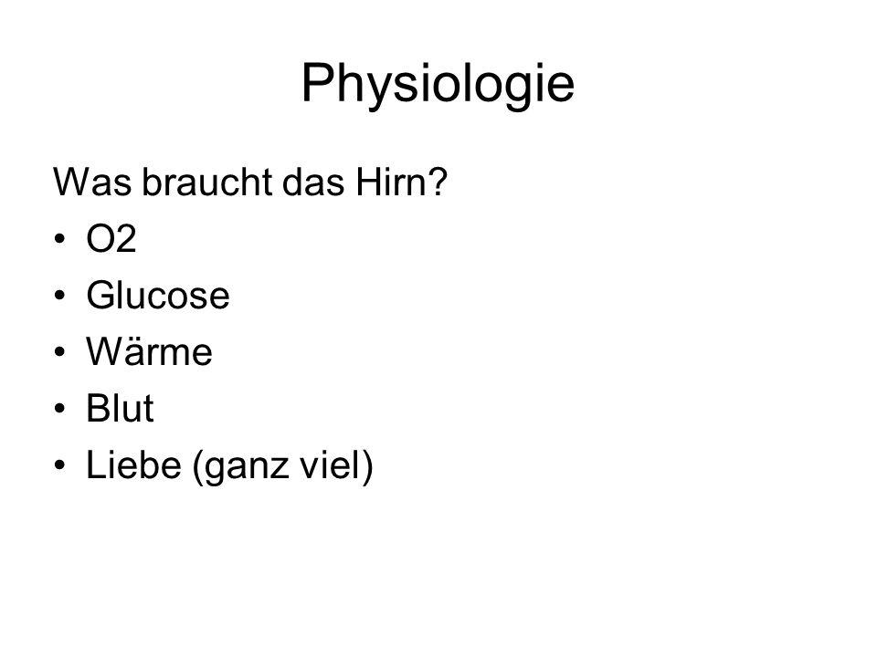 Physiologie Was braucht das Hirn O2 Glucose Wärme Blut