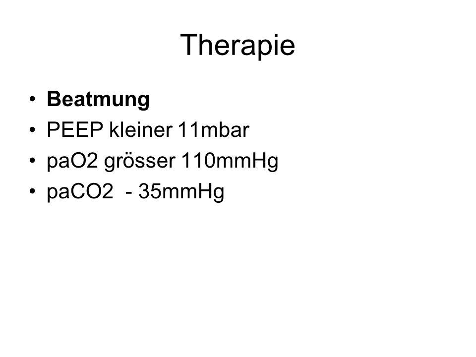 Therapie Beatmung PEEP kleiner 11mbar paO2 grösser 110mmHg