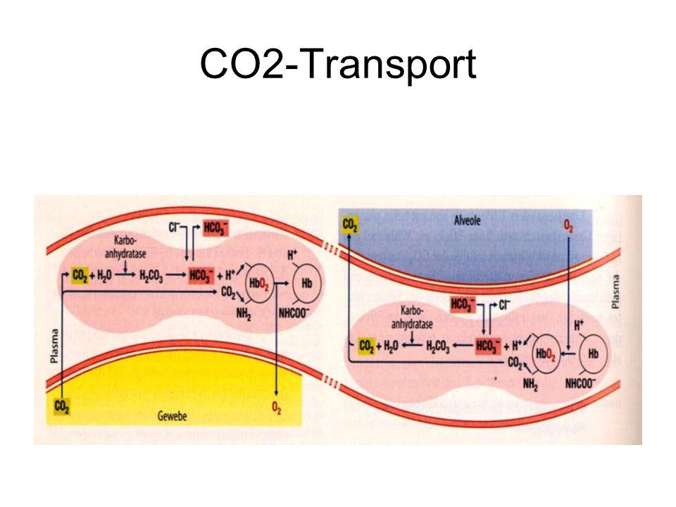 CO2-Transport