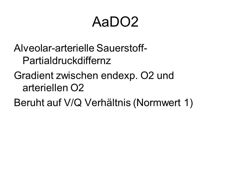 AaDO2 Alveolar-arterielle Sauerstoff- Partialdruckdiffernz