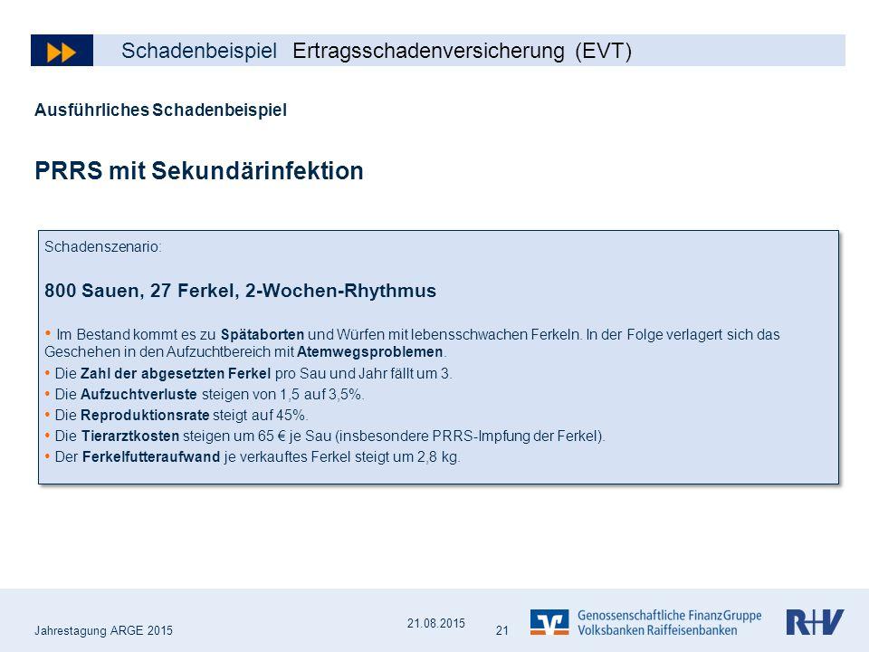 PRRS Schadenbeispiel Ertragsschadenversicherung (EVT)