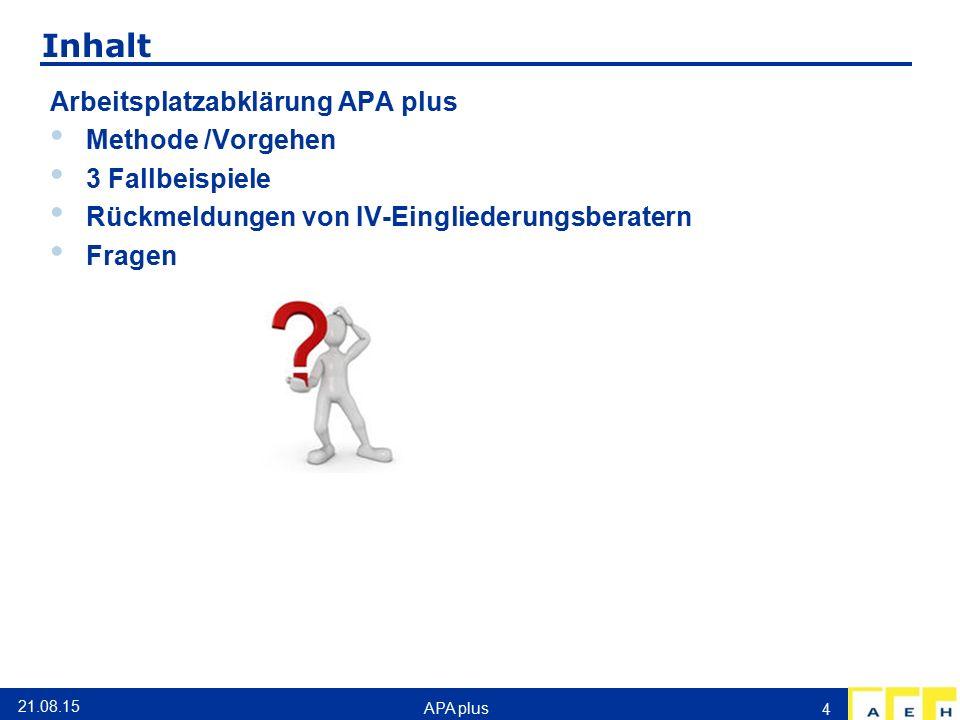 Inhalt Arbeitsplatzabklärung APA plus Methode /Vorgehen