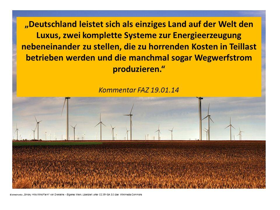"""""""Deutschland leistet sich als einziges Land auf der Welt den Luxus, zwei komplette Systeme zur Energieerzeugung nebeneinander zu stellen, die zu horrenden Kosten in Teillast betrieben werden und die manchmal sogar Wegwerfstrom produzieren."""
