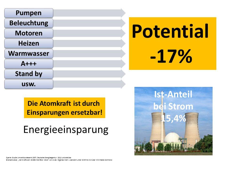 Die Atomkraft ist durch Einsparungen ersetzbar!