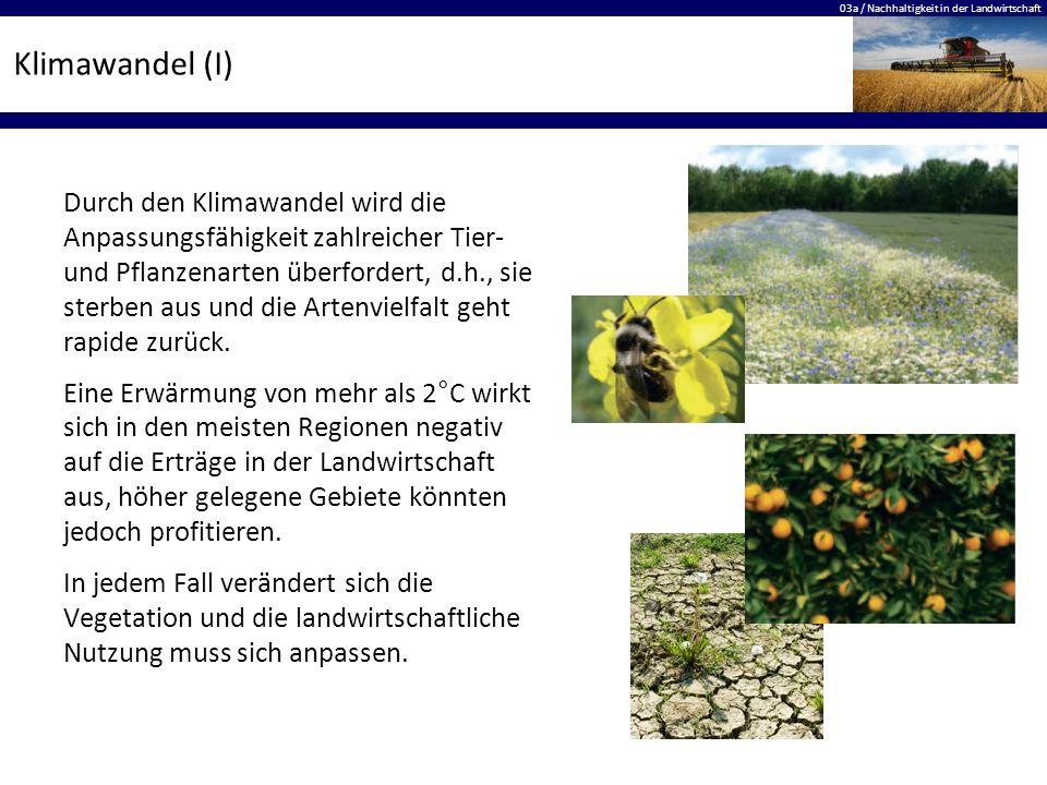 Klimawandel (I)