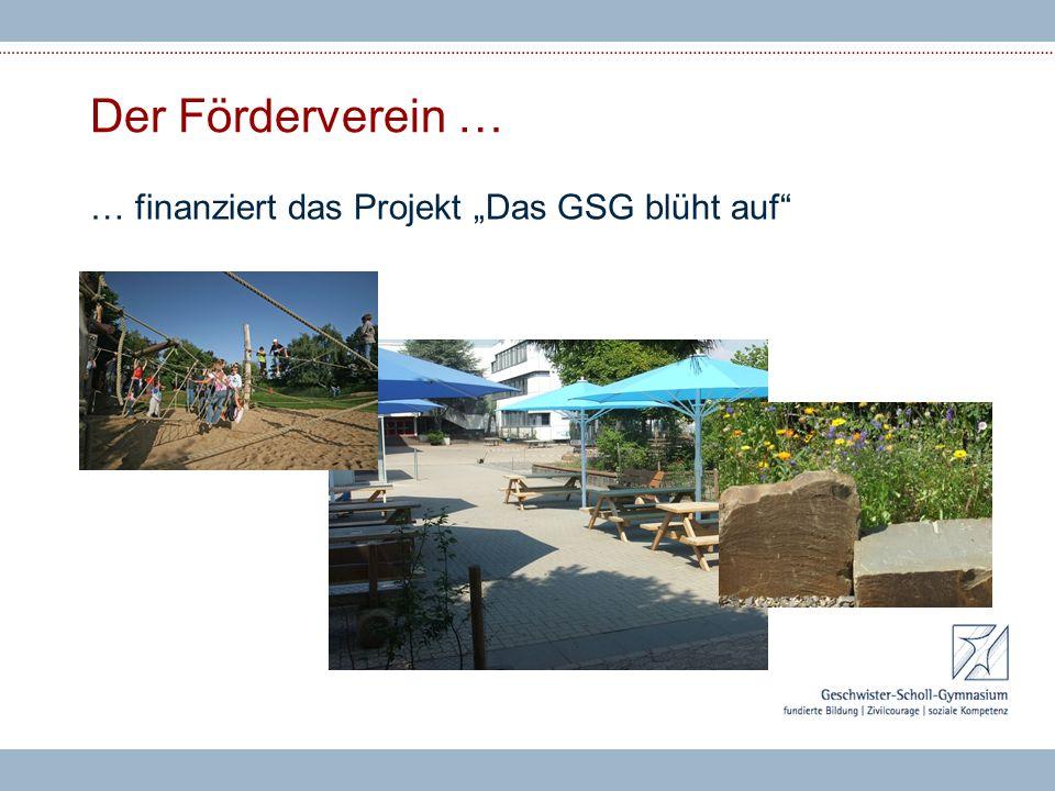 """Der Förderverein … … finanziert das Projekt """"Das GSG blüht auf"""