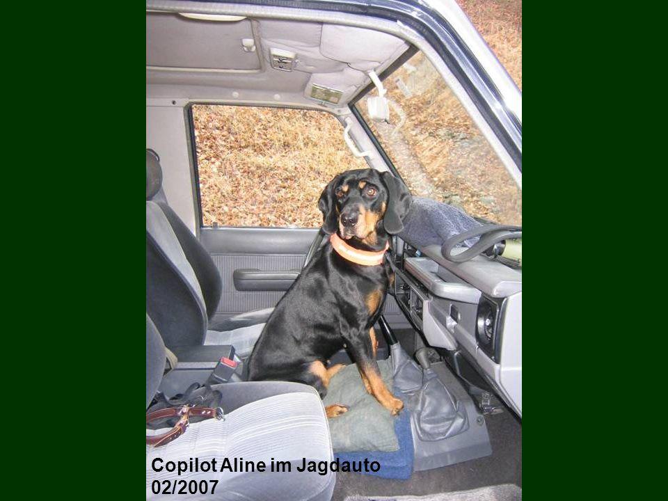 Copilot Aline im Jagdauto
