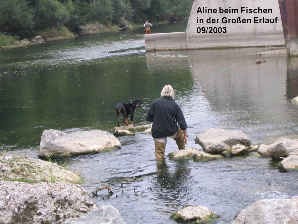 Aline beim Fischen in der Großen Erlauf 09/2003