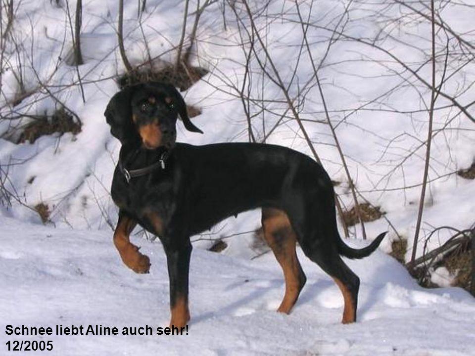 Schnee liebt Aline auch sehr!