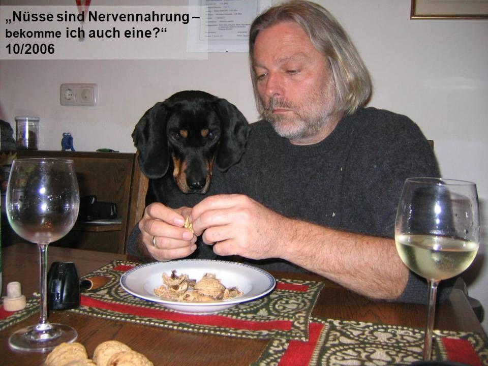 """""""Nüsse sind Nervennahrung – 10/2006"""