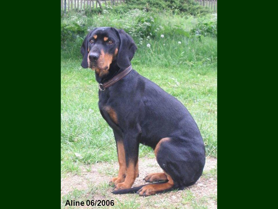 Aline 06/2006