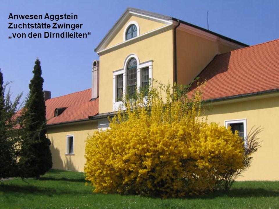 """Anwesen Aggstein Zuchtstätte Zwinger """"von den Dirndlleiten"""