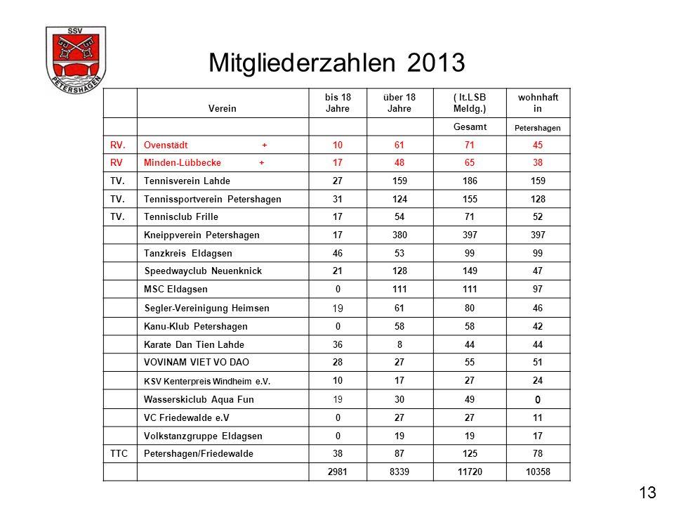 Mitgliederzahlen 2013 13 19 Verein bis 18 Jahre über 18 Jahre