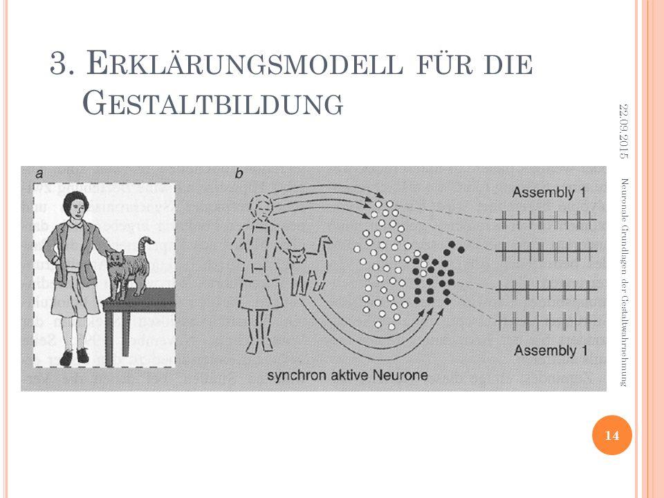 3. Erklärungsmodell für die Gestaltbildung