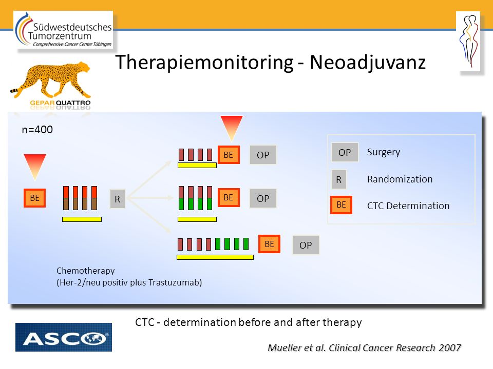 Therapiemonitoring - Neoadjuvanz