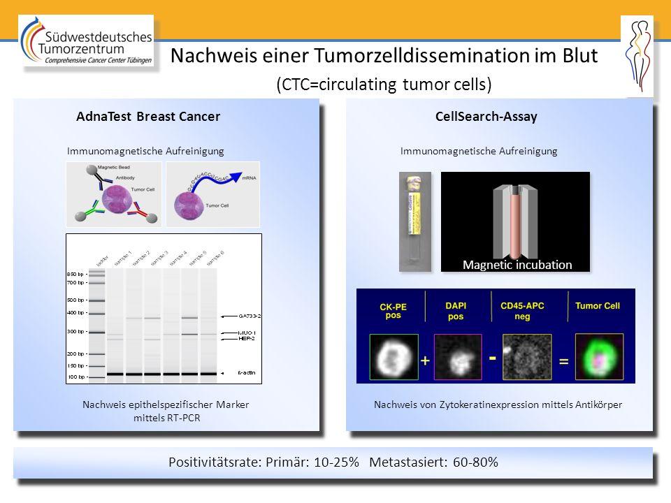 Nachweis einer Tumorzelldissemination im Blut