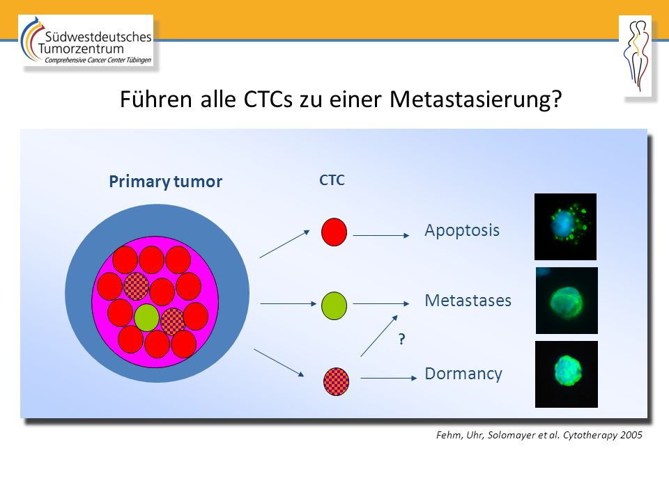 Führen alle CTCs zu einer Metastasierung