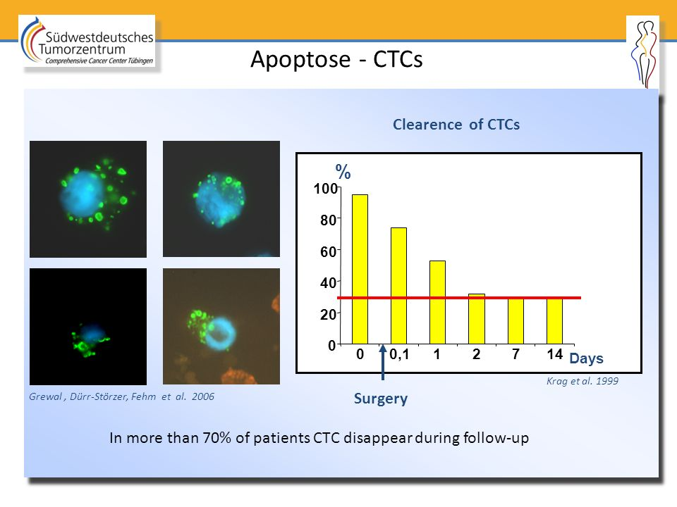 Apoptose - CTCs % Clearence of CTCs Surgery