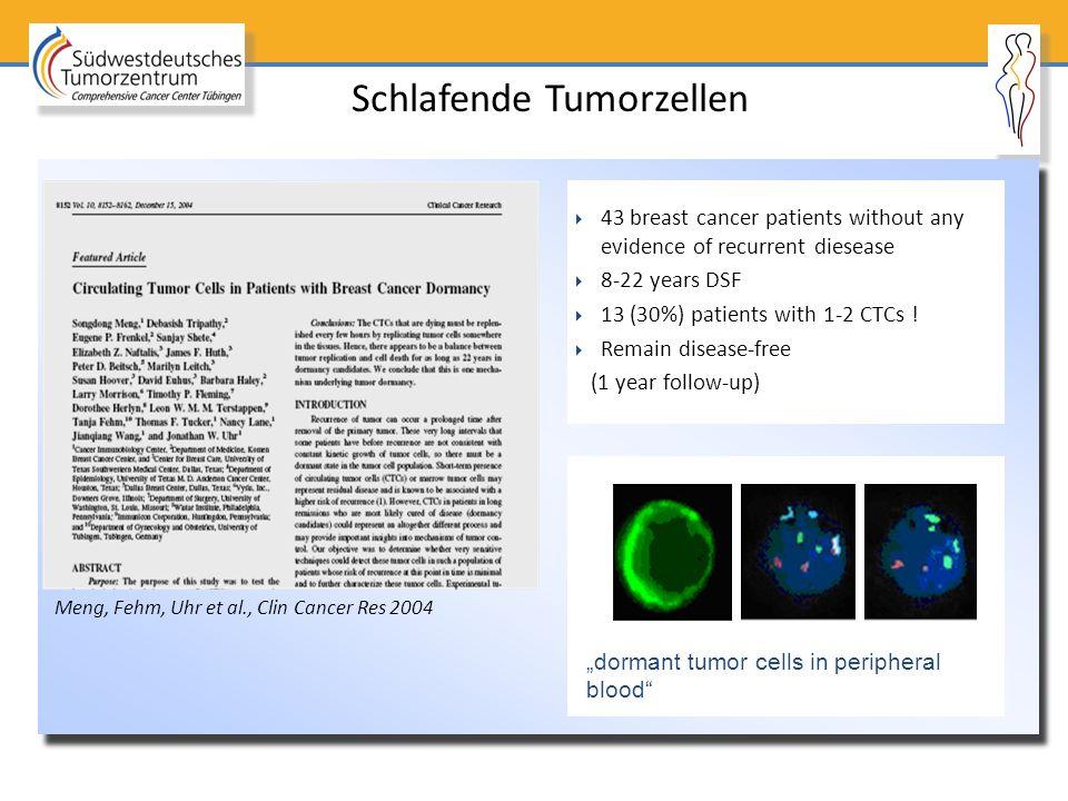 Schlafende Tumorzellen
