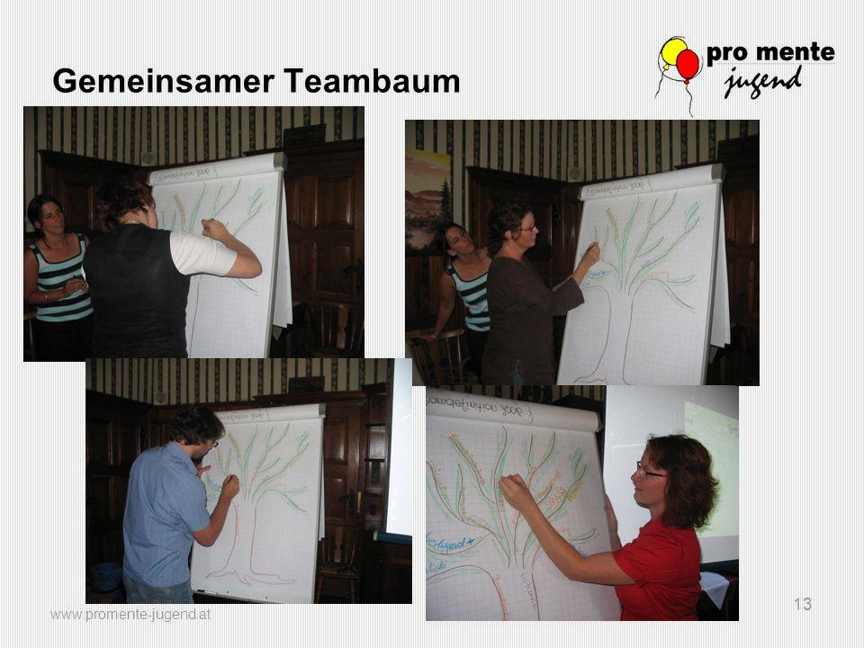 Gemeinsamer Teambaum www.promente-jugend.at