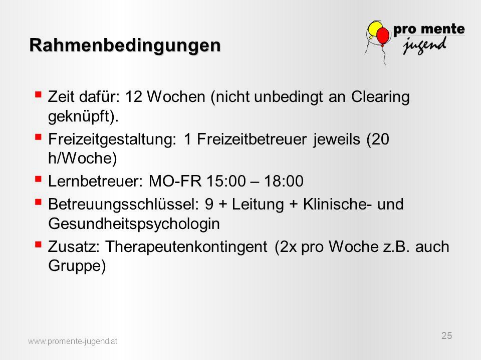 Rahmenbedingungen Zeit dafür: 12 Wochen (nicht unbedingt an Clearing geknüpft). Freizeitgestaltung: 1 Freizeitbetreuer jeweils (20 h/Woche)