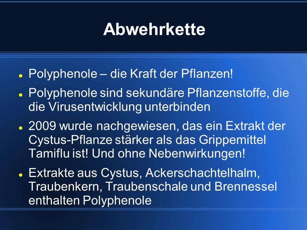 Abwehrkette Polyphenole – die Kraft der Pflanzen!