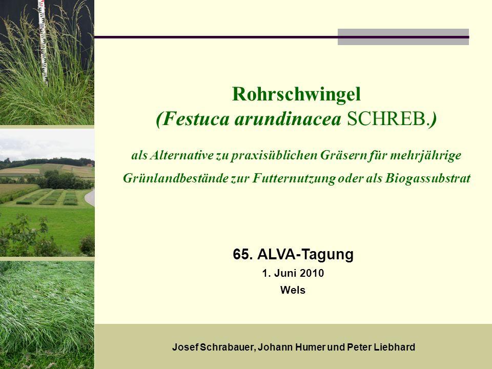 Josef Schrabauer, Johann Humer und Peter Liebhard