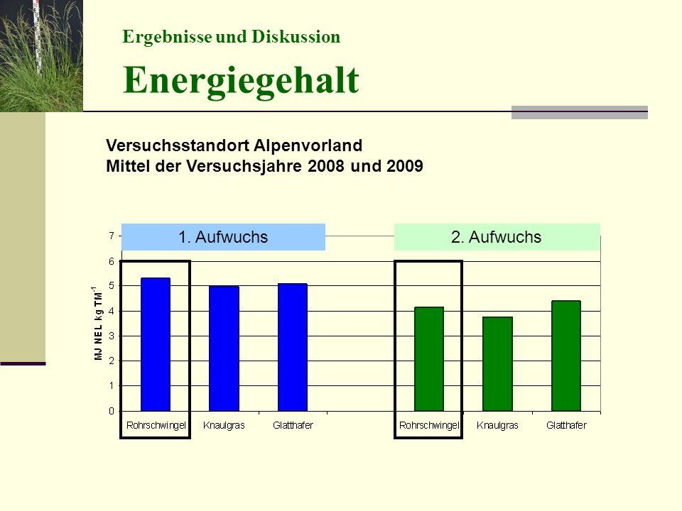 Energiegehalt Ergebnisse und Diskussion