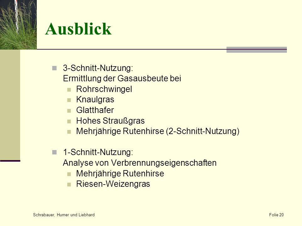 Ausblick 3-Schnitt-Nutzung: Ermittlung der Gasausbeute bei