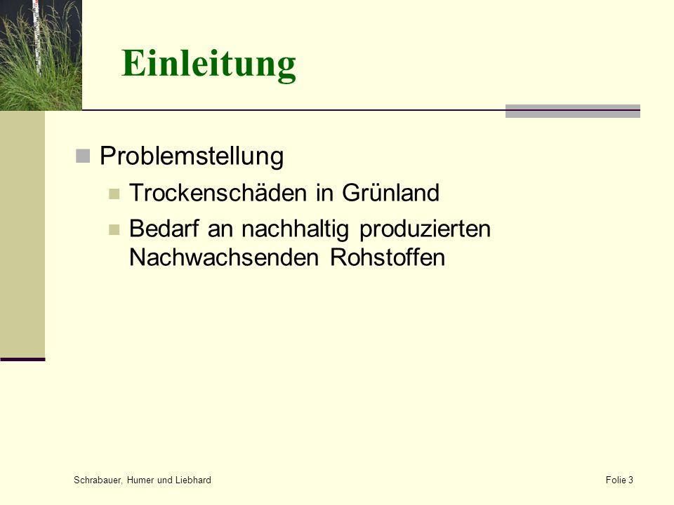 Einleitung Problemstellung Trockenschäden in Grünland