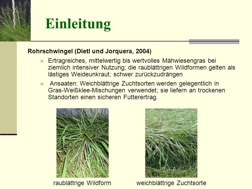 Einleitung Rohrschwingel (Dietl und Jorquera, 2004)
