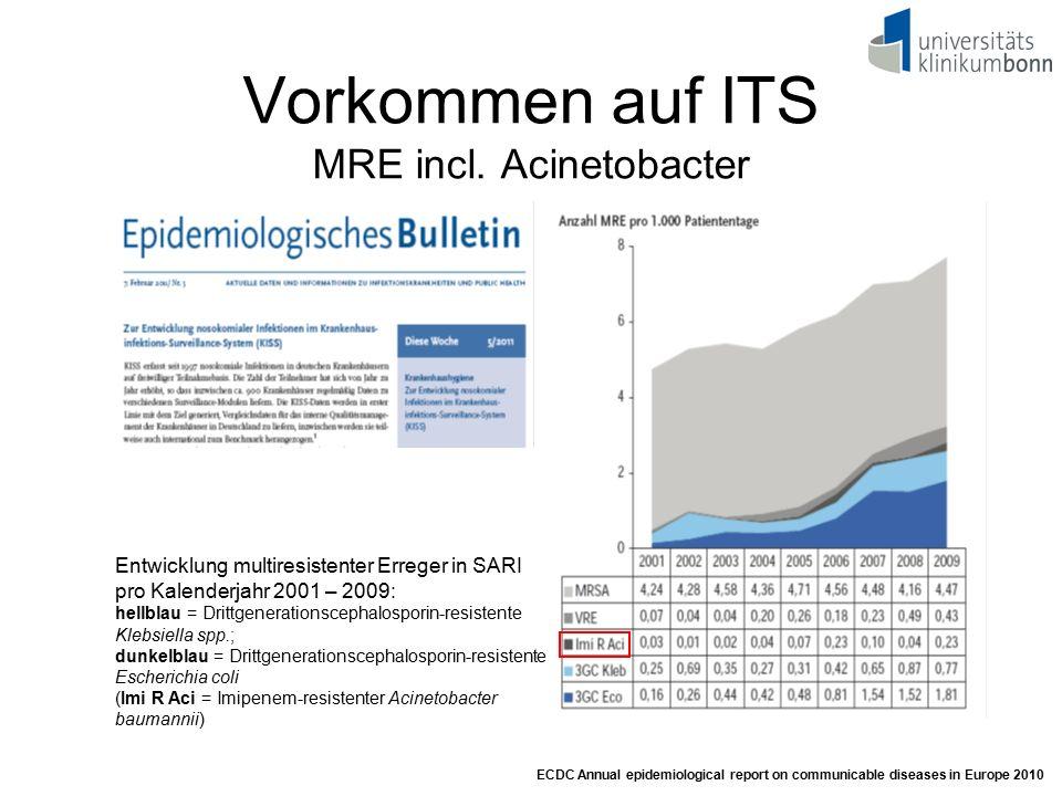Vorkommen auf ITS MRE incl. Acinetobacter