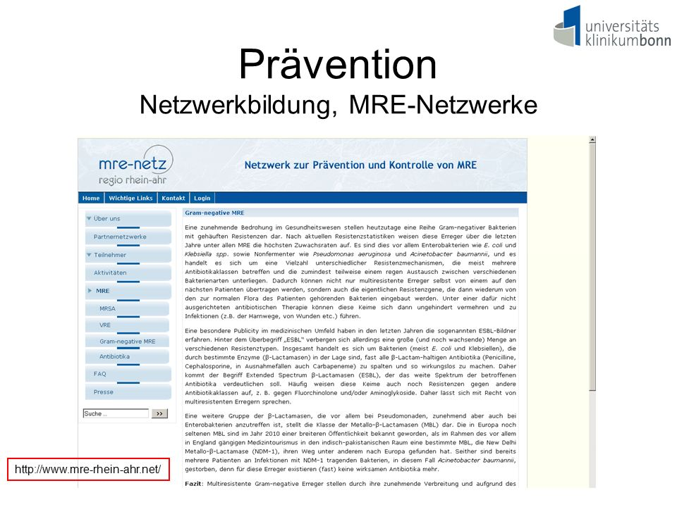 Prävention Netzwerkbildung, MRE-Netzwerke