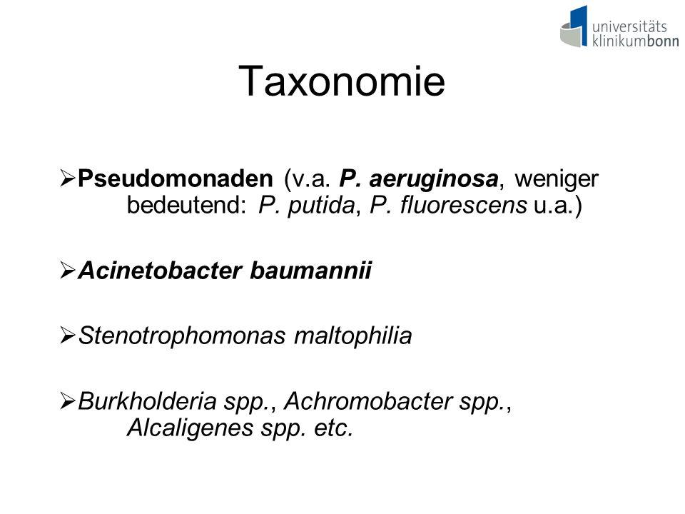 Taxonomie Pseudomonaden (v.a. P. aeruginosa, weniger bedeutend: P. putida, P. fluorescens u.a.) Acinetobacter baumannii.