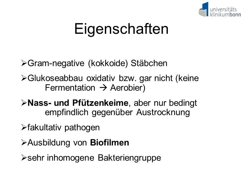 Eigenschaften Gram-negative (kokkoide) Stäbchen