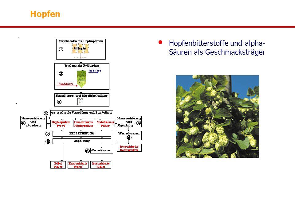 Hopfen Hopfenbitterstoffe und alpha-Säuren als Geschmacksträger
