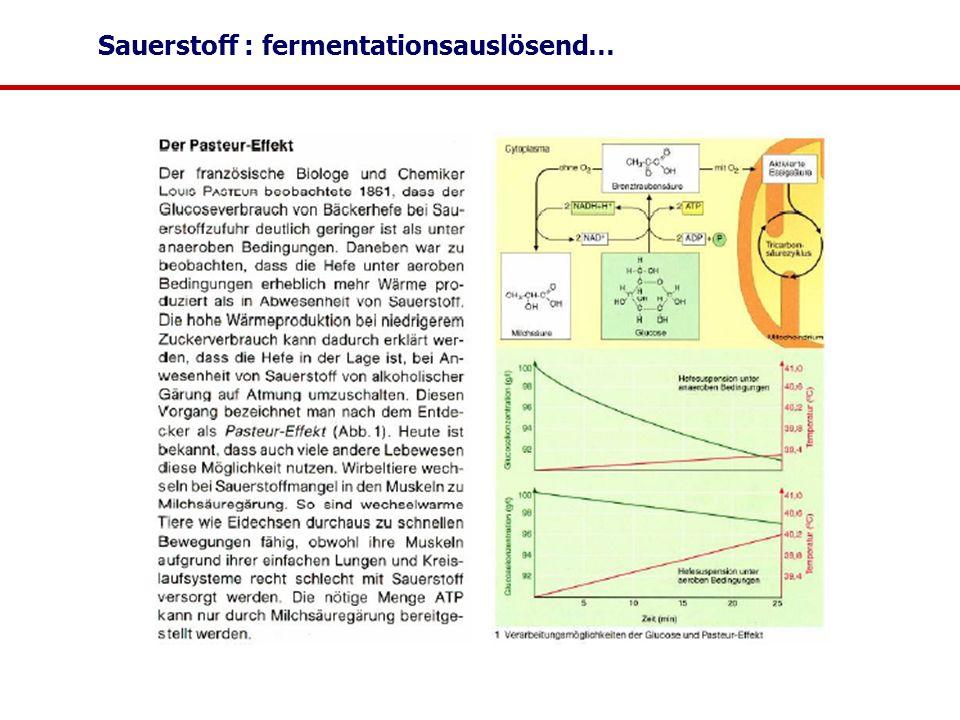 Sauerstoff : fermentationsauslösend…