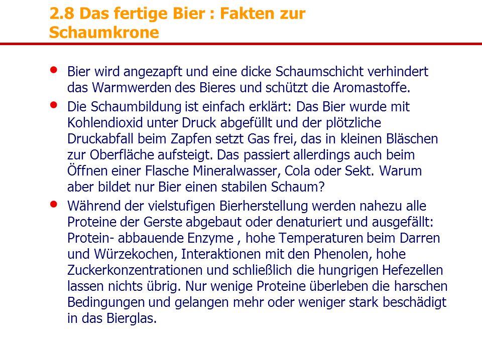 2.8 Das fertige Bier : Fakten zur Schaumkrone