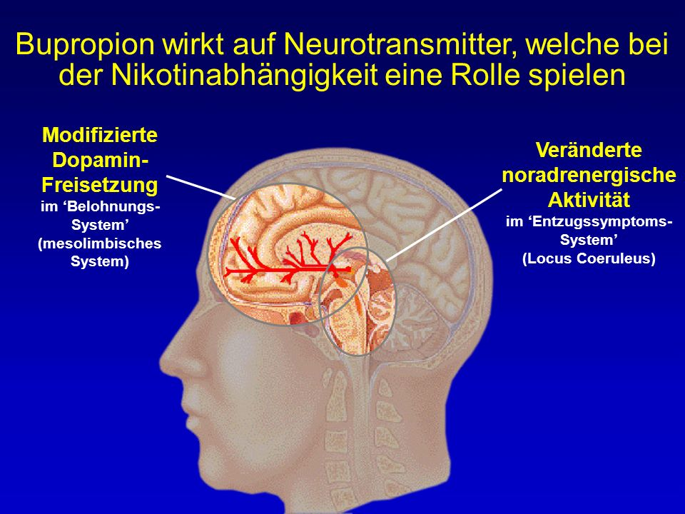 Bupropion wirkt auf Neurotransmitter, welche bei der Nikotinabhängigkeit eine Rolle spielen
