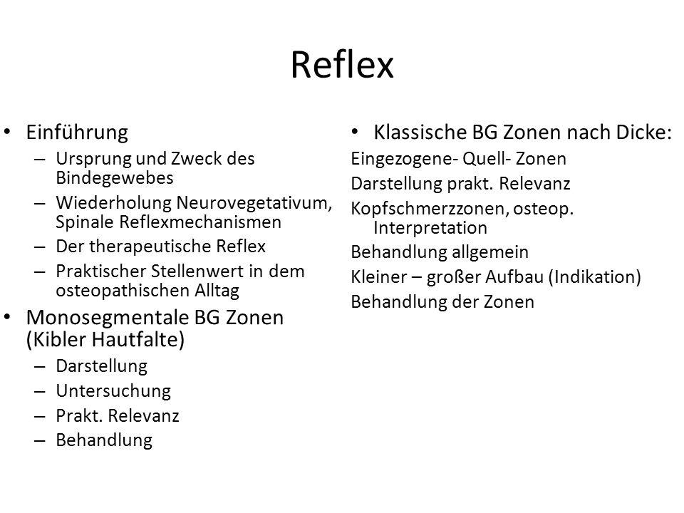 Reflex Einführung Monosegmentale BG Zonen (Kibler Hautfalte)