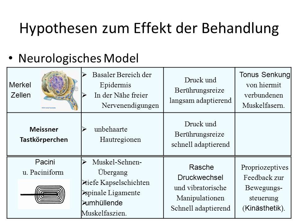 Hypothesen zum Effekt der Behandlung
