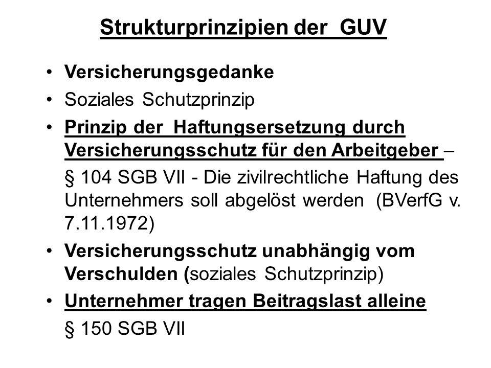 Strukturprinzipien der GUV