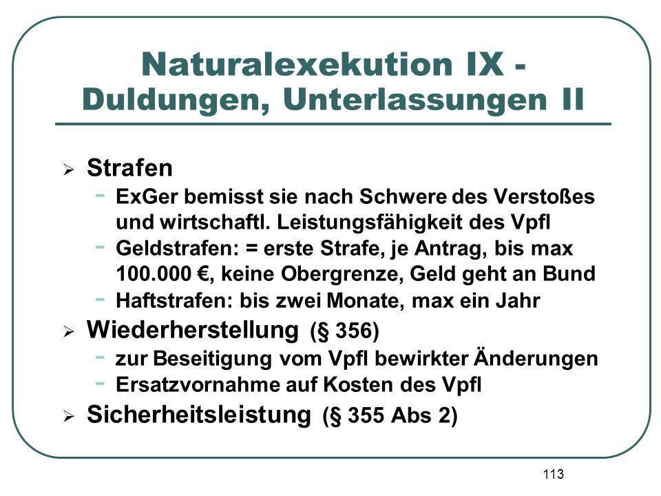 Naturalexekution IX - Duldungen, Unterlassungen II