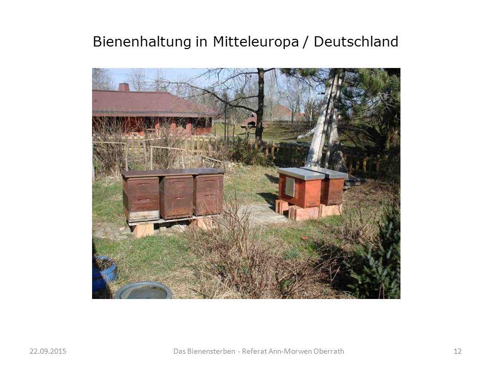 Bienenhaltung in Mitteleuropa / Deutschland