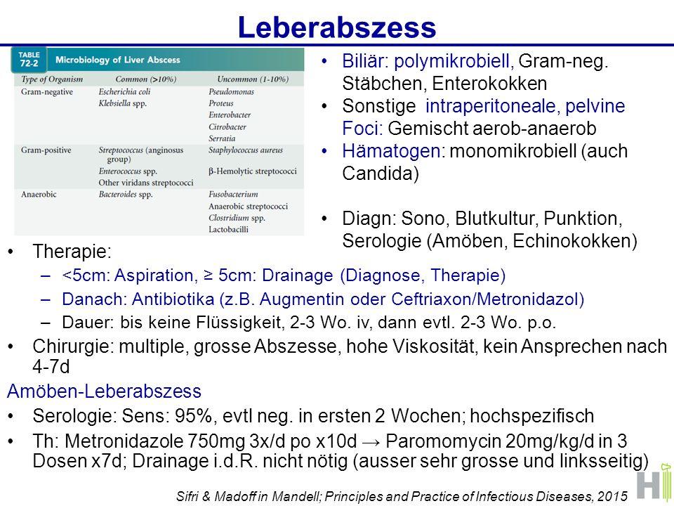 Leberabszess Biliär: polymikrobiell, Gram-neg. Stäbchen, Enterokokken