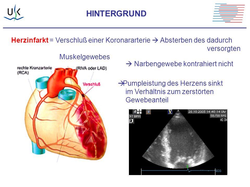 HINTERGRUND Herzinfarkt = Verschluß einer Koronararterie  Absterben des dadurch. versorgten Muskelgewebes.
