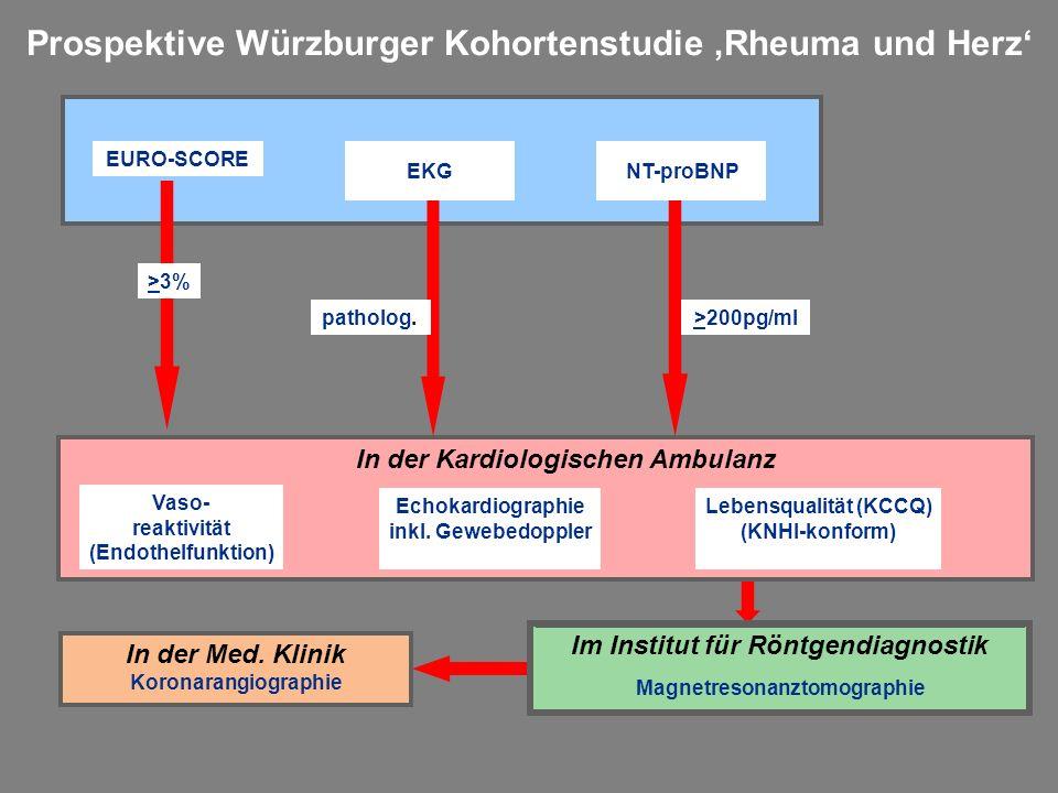 Prospektive Würzburger Kohortenstudie 'Rheuma und Herz'