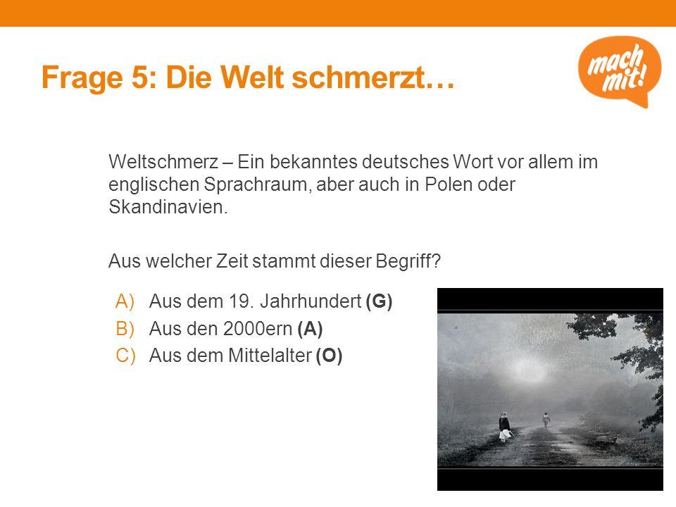 Frage 5: Die Welt schmerzt…